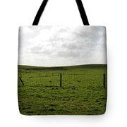 Lush Green Grass On The Cliffs Of Moher Tote Bag