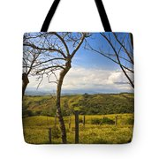 Lush Land Leafless Trees I Tote Bag