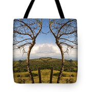 Lush Land Leafless Trees IIi Tote Bag