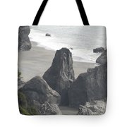 Lush Rock Coast Tote Bag by Dylan Punke