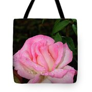 Lustrous Pink Rose Tote Bag