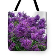 Luxurious Lilacs Tote Bag