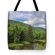 Lyman Run State Park Tote Bag