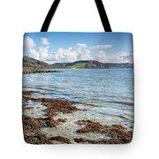 Lyme Regis Seascape 5 - October Tote Bag
