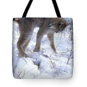Lynx Captures Hare Tote Bag
