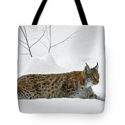 Lynx Hunting In The Snow Tote Bag