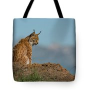 Lynx In Profile On Rock Looking Down Tote Bag