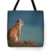Lynx In Profile On Rock Looking Up Tote Bag