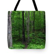 Ma Section Begins Tote Bag