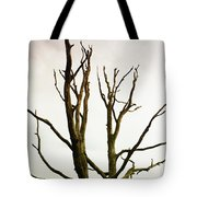 Macabre Leafless Tree Tote Bag