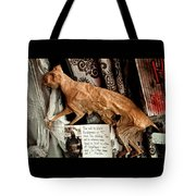 Macabre Mummified Cat - Halloween Tote Bag