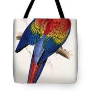 Macaw By_edward_lear Tote Bag
