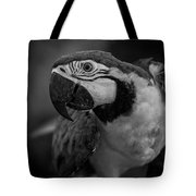 Macaw Portrait In Black And White Tote Bag