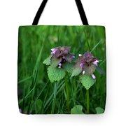 Macro Blooming Clover Tote Bag