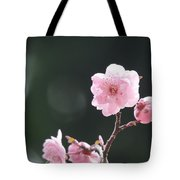 Macro Cherry Blossoms Tote Bag