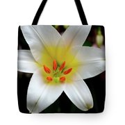 Macro Close Up Of White Lily Flower In Full Blossom Tote Bag