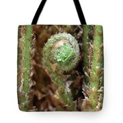 Macro Fern Sprout Tote Bag