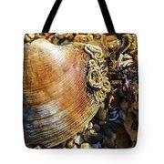 Macro Shell Tote Bag