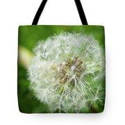 macro shot of a beautiful Dandelion. Tote Bag