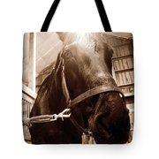 Macy Tote Bag