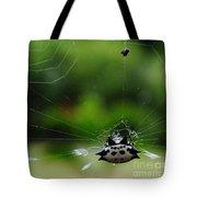 Spiny Orb Weaver Tote Bag