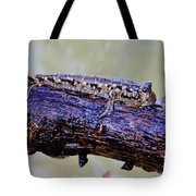 Madagascar Mudskipper Tote Bag