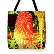 Madeira Funchal  Tritoma, Red Hot Poker, Torch Lily, Poker Plant Tote Bag