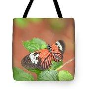 Madiera Butterflies Tote Bag