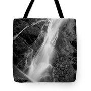 Madison Creek Falls Twelve Tote Bag