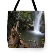 Madison Falls 3 Tote Bag