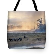 Madison Morning Tote Bag