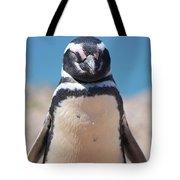 Magellanic Penguin In Argentina Tote Bag