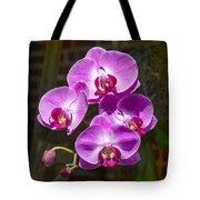 Magenta Orchids Tote Bag