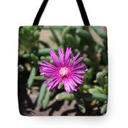 Magenta Purple Desert Moss Rose Tote Bag