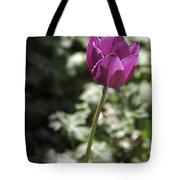 Magenta Tulip Tote Bag