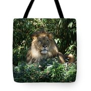 Magestic Lion Tote Bag