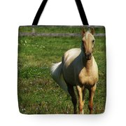 Maggie - Michigans Morning Breeze Tote Bag