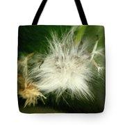 Magic Garden 17 Tote Bag