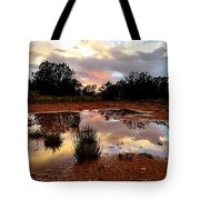 Magic In A Rain Puddle Tote Bag