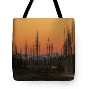 Magic Morning Tote Bag