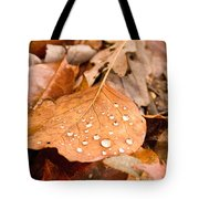 Magic Of Surface Tension Tote Bag