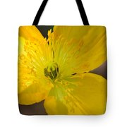 Magic Of The Golden Poppy Tote Bag