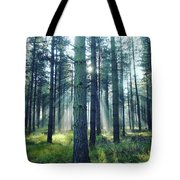 Magic Sunbeams Tote Bag