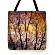 Magical Colorful Sunset Tree Silhouette Tote Bag
