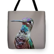 Magnificent Hummingbird Male Tote Bag
