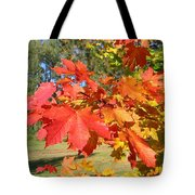 Magnificent Maple Leaves Tote Bag