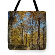 Magnificent Maples Tote Bag