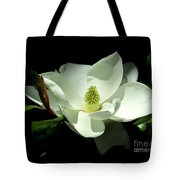 Magnificent White Magnolia - Photography Tote Bag