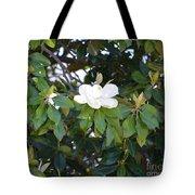 Magnolia Blooming 3 Tote Bag