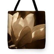 Magnolia Blossom Bw Tote Bag